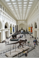 Field Museum - Chicago, Illinois